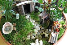 Fairy gardens / by Missy Woessner Munson