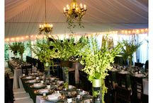 Tent Liners and Chandeliers