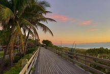 Miami ♡