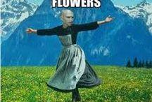 Voldemort ⚡️