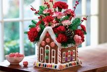 Gingerbread Houses / by Terri Kreger