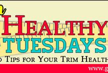 Recipes: Trim Healthy Mama / by Kendra Neal