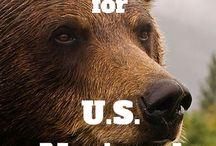 US wildlife