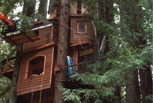Tree Houses & Tiny Dwellings / by Vicki Childs