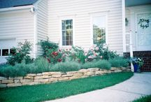 Curb Appeal / by Vicki Westfall