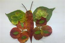 tvorba z listů