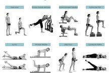 gym exersises