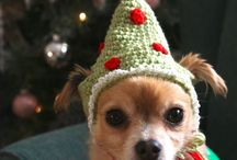 crochet dog xmas elf har