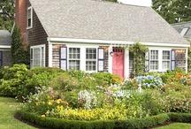 Gardens / by Janet Johnson
