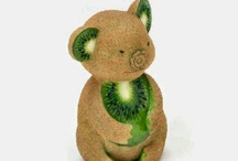 koala fruit