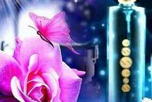 Women's perfume, cosmetics / Dámské parfémy, kosmetika - Essens / Women's perfumes, cosmetics / Dámské parfémy, kosmetika, dárkové sety - České parfémy Essens Brno- vysoká kvalita za nízkou cenu - 20% vonných esencí - Essens životní styl - krása, zdraví, prosperita - rozvoj osobnosti, marketing, podnikání - e-shop - Essens-Club.cz