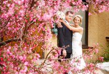 Spring Wedding Inspiration / Spring wedding inspiration from Colorado Wedding Vendors / by Villa Parker