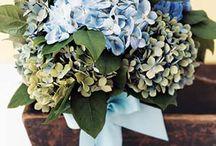 BestDayEver!! ....wedding / by Romy Randolph