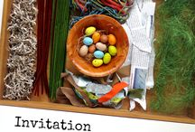 Invitation to build a birds nest