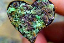 We <3 Cannabis!