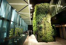 Top Design Hotels in New York