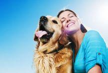 Nuestras mascotas son más que una compañía / Son más que una #compañía, son especiales, divertidos, mejoran nuestro humor,te reconfortan y te hacen olvidar de sucesos ocurridos durante el día. Saltan de la emoción apenas te ven llegar del trabajo, son #felices por el solo hecho de verte:)