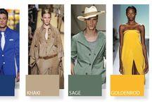 Colour - Forecast Spring 2013