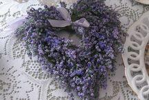 Lavender DIY