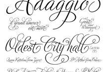 Graphics // Fonts