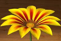 Gazania / Gazania Gazania to roślina pochodząca z Afryki Południowej. Ma silnie skrócone, rozgałęzione, u dołu płożące pędy, zakończone pękiem wzniesionych liści 5–15 cm długości. Każdy pęd zakończony jest koszyczkiem kwiatowym osadzonym na długiej szypułce.Pięknie prezentuje się w donicach na tarasach, balkonach, a także parapetach.