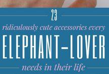 Elephant - My best friend
