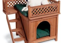 Best Value Pet Supplies Housing and More / by JD_Sanders