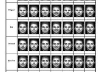Microexpressions And Body Language