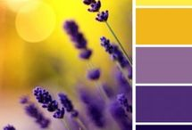 Inspired color combinations