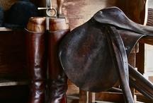 Equestian
