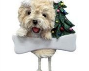 Cairn Terrier / Cute cairn terrier images and gift ideas for cairn terrier owners.