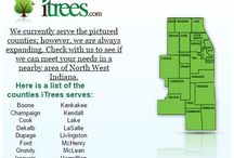 iTrees.com Services / iTrees.com Services and Operation pins are our day to day operations in the office and at the nursery. Including other helpful information about tree planting.