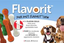 Made in USA Flavorit™ Nylon Bone Dog Chews