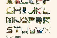rovar ÁBC, insect alphabet