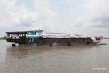 Embarcaciones vietnamitas / #Barcos de #Vietnam #ships #Vietnameseships