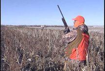 Upland Hunting Video