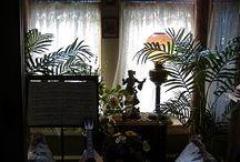 Interior Design/Victorian