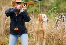 Dog Pond Kennels / Dog Pond Kennels, Thomasville, Ga www.dogpondkennels.com dogpond1@yahoo.com / by Laurie Williams