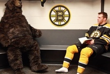 """Bruins Fun / I love love love the Pinterest presence of the Boston Bruins' """"The Bear"""" (bruinsbear). So I'm gonna repin a lot of his stuff. / by Emma"""