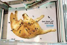 Creative Floor Sticker Ads