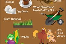 gardening / by Field to Plate