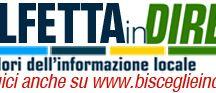 MOLFETTA IN DIRETTA / Rassegna delle notizie pubblicate quotidianamente sul sito www.molfettaindiretta.it