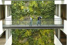 Arquitectura ecologica / Ideas nuevas. Diseño jardines verticales