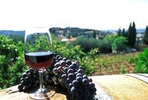 amo vinnho