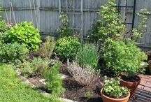 Gardening / by Marilee Wade