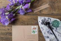 Fiori - Il linguaggio dei fiori / Un dizionario fotografico per svelare i messaggi segreti dei fiori