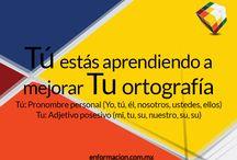 Redacción sin dolor / Imágenes con buena redacción y ortografía generados para el blog: enformacion.com.mx