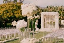 Weddings / by Wynn Austin