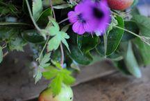 my online garden articles