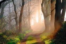 Aah... the serenity